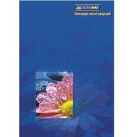 Книга учета офсетная А4 96л BuroMax